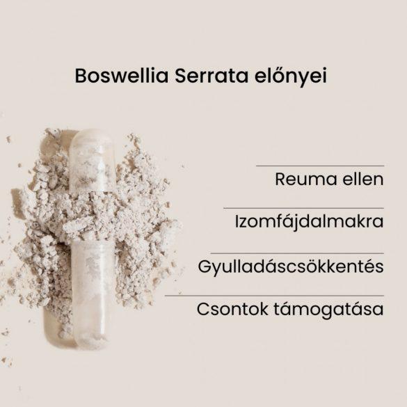 BOSWELLIA SERRATA - Az ízületek támogatója