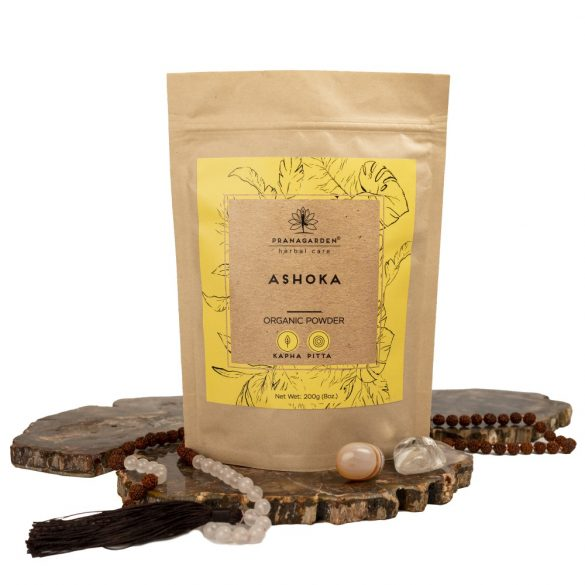 ASHOKA - A női méh védelmezője
